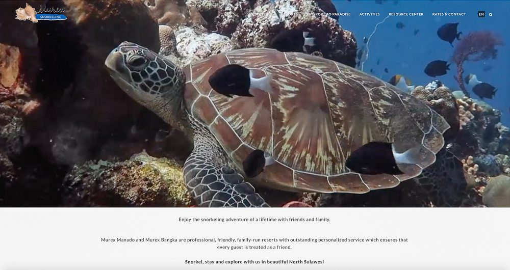 Murex-snorkeling-home-page