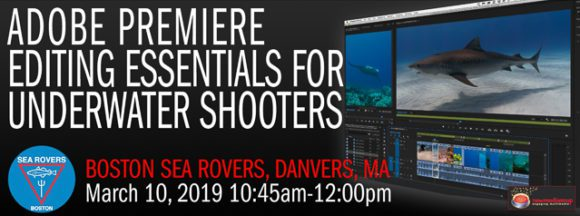 Video editing essentials for underwater videographers