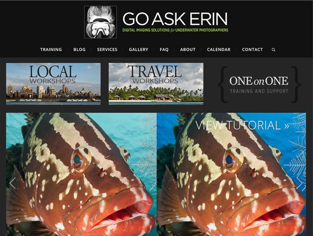 Newmediasoup-Go-Ask-Erin-website-home-page3-4x3