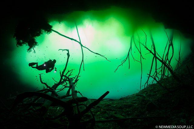 Newmediasoup_JenniferPenner_Cenotes2014-3