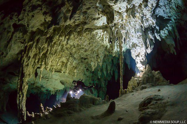 Newmediasoup_JenniferPenner_Cenotes2014-6
