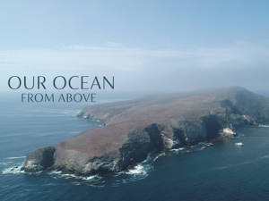 Our Ocean From Above - Aerial Stock Footage