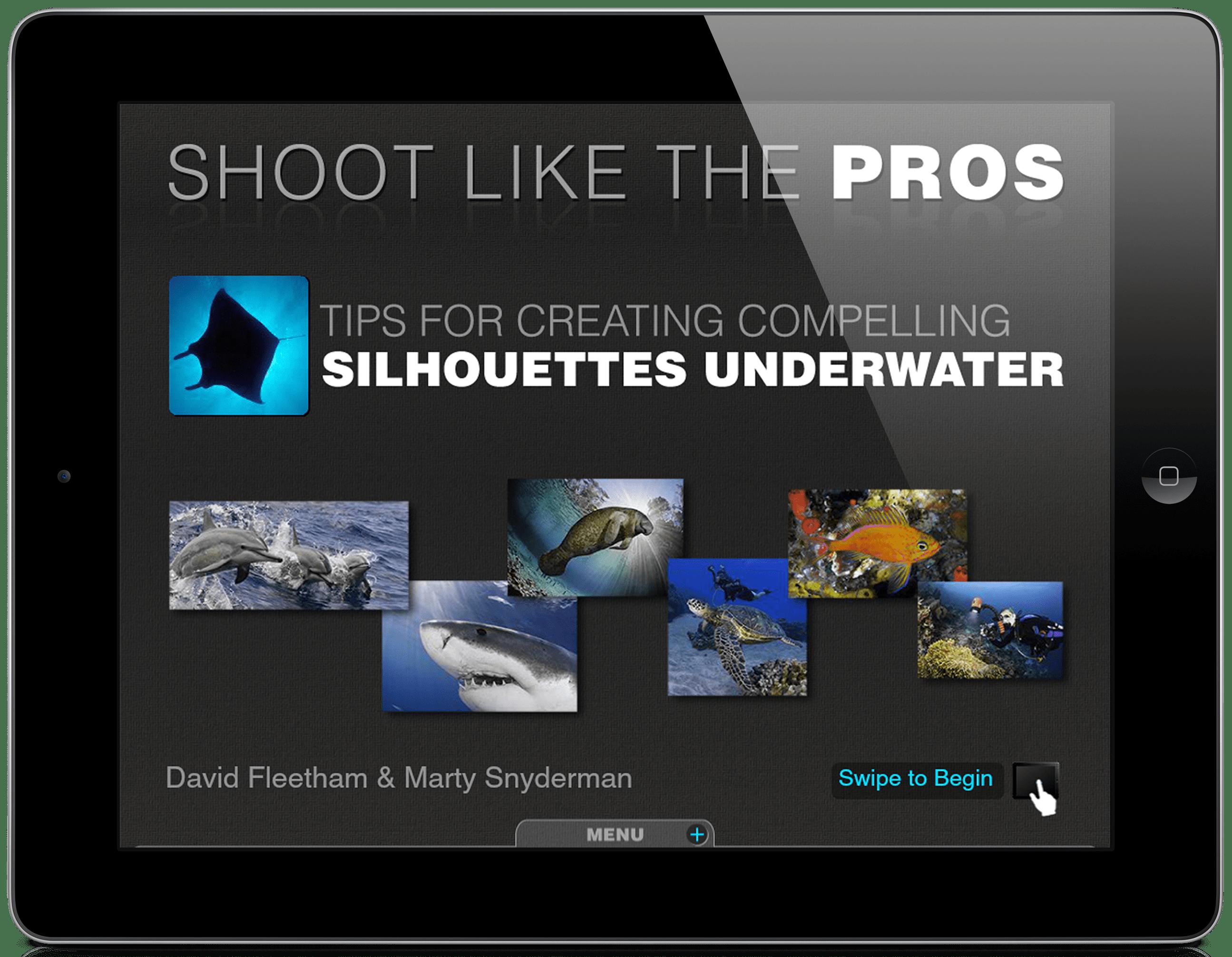 iPad_silhouettes1
